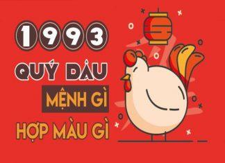 1993-menh-gi