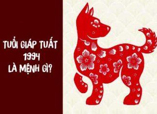 1994-menh-gi
