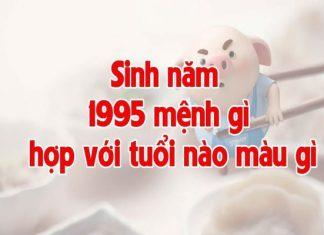 1995-menh-gi