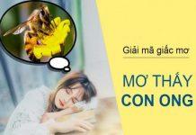 con-ong-so-may