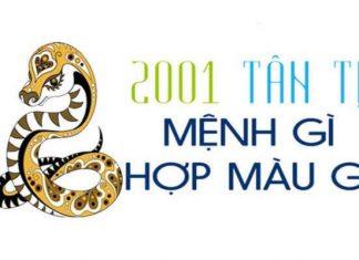 2001-menh-gi