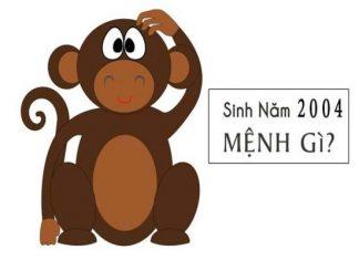 2004-menh-gi