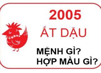 2005-menh-gi-1