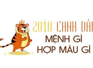 nam-2010-menh-gi